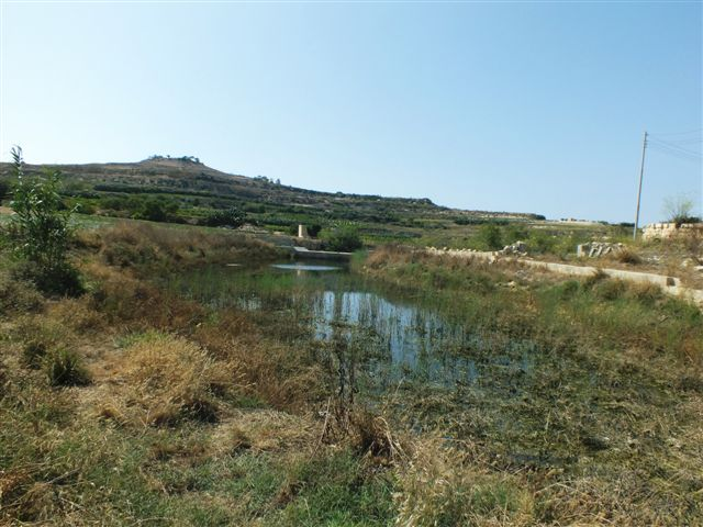 Chadwick-Lakes, Malta - Foto: Charles Gauci