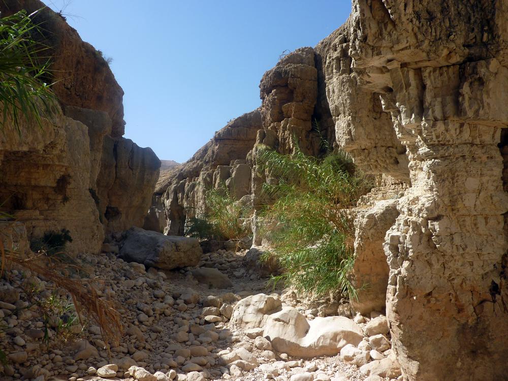 Wadi in der Negevwüste - Foto Rosindo Pamperana