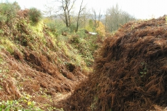 Saumpfade und Erosion