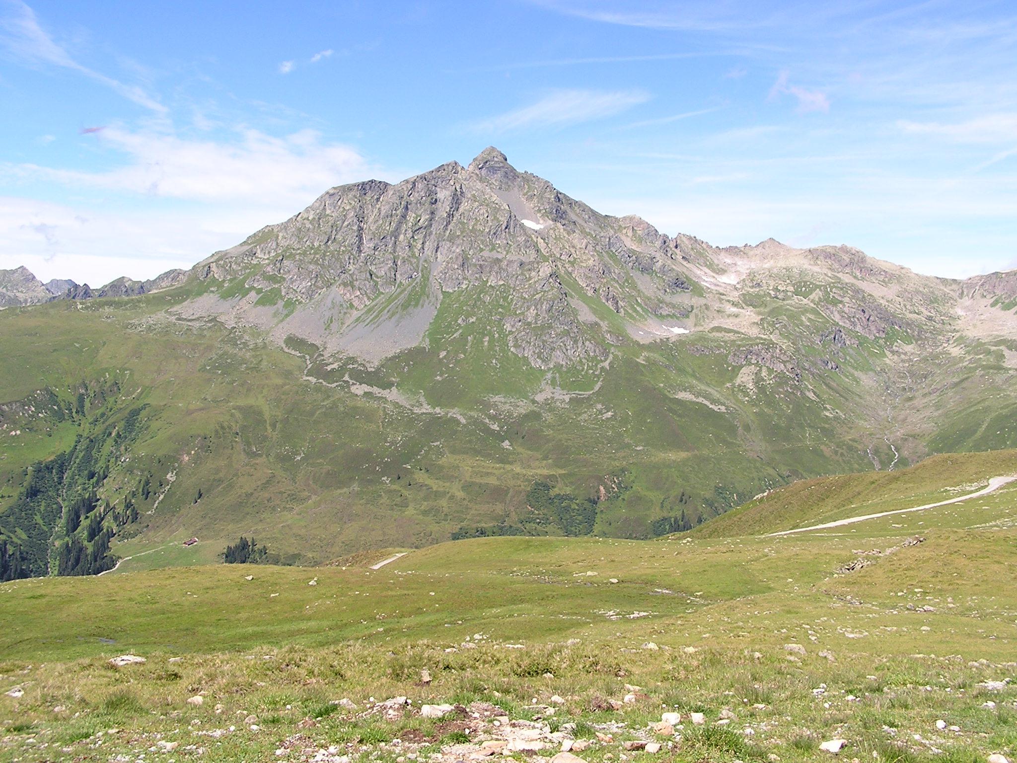 Alpenwiesen