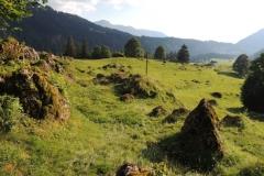 Sippersegg: Alpe - vor einer Stunde wurde das Vieh in den STall getrieben